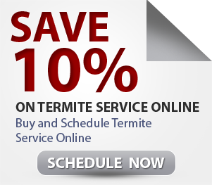 Termites treatments